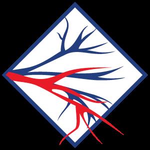 Angiomedi - Centro Integrado de Angiologia e Cirurgia Vascular
